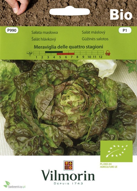 Nasiona ekologiczne warzyw vilmorin