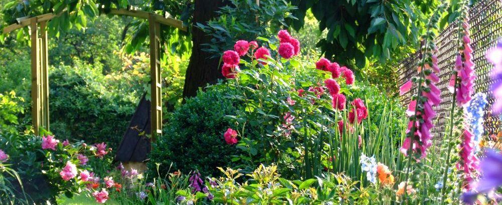 Czerwiec w ogrodzie - prace w czerwcu