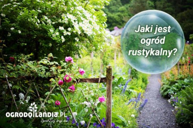 rustykalny ogrod