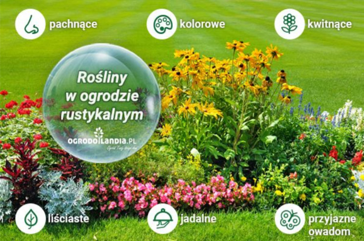 Jakie rośliny do ogrodu rustykalnego?
