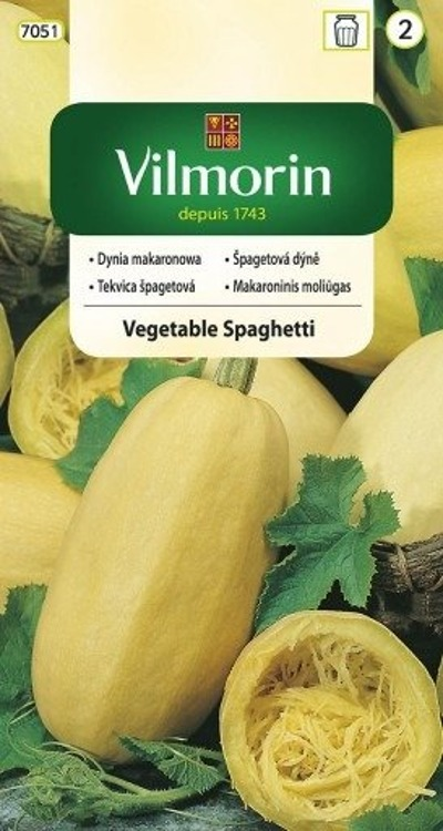 Dynia makaronowa Vegetable Spaghetti 3g