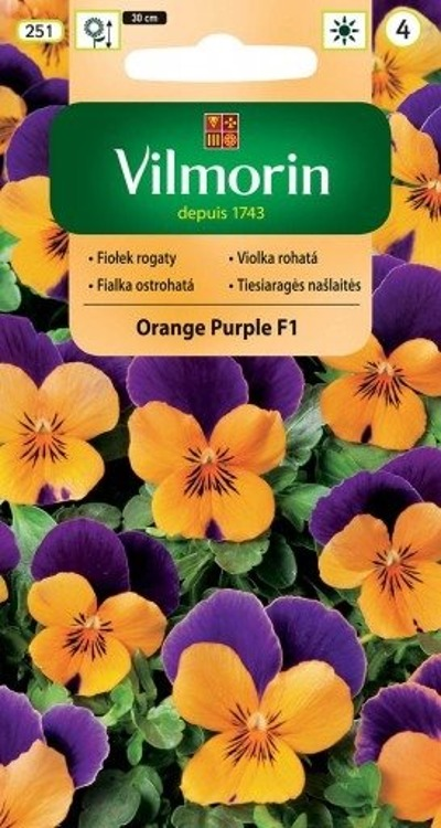 Fiołek rogaty Orange Purple 20 ziaren