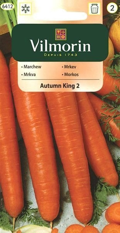Marchew jadalna Autumn King 2 późna 5g